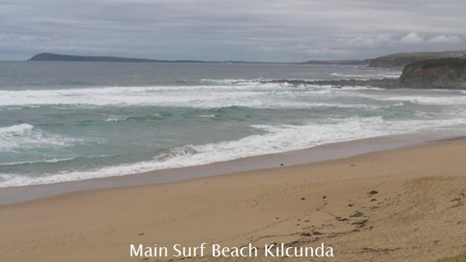 report cape surf paterson
